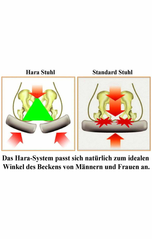 HARASTUHL-chaise à disque pivotante-chaise de bureau-chaise à disque pivotante-chaise-ergonomique-chaises-ergonomiques-orthopédique-orthopédique-hara-chaise d'assurance pension